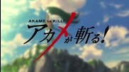 Akame Ga Kill! episode 13 (бг събс)