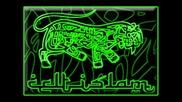 Dub Reflex by Celt Islam
