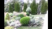 Nextstrike Tv Ботаническа Градина Nlive 001