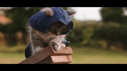 Сладки Котета - Assassin's Kittens Unity