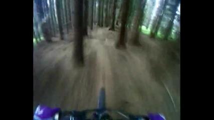 Downhill Vitosha