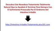 Sindrome De Intestino Irritable