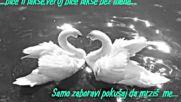 Dana Karic - Oprosti mi (bg sub)