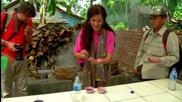 Без Багаж - Индонезия #2 - Ботаническа градина, палмова захар, бебета морски костенурки