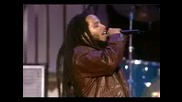 Ziggy Marley - Could You Be Loved: Tribut Bob Marley