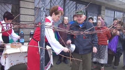 зарезан - 14,02,2014 - Пиперково