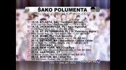 SAKO POLUMENTA - USA Turneja Nobembar 2013 reklama