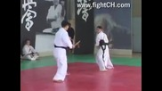 Kyokushin Karate Demo