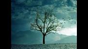 Снежни дни - Клаудио Балиони