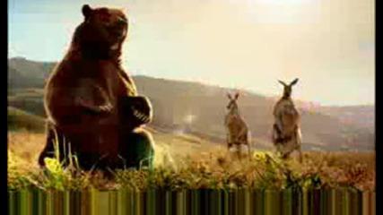 Животни Пеят