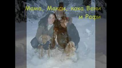 Зимни Емоции - Кокерчето Макси