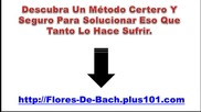 Flores De Bach Para Que Sirven