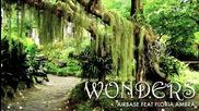 Airbase feat. Floria Ambra - Wonders
