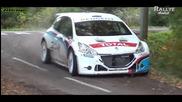 Peugeot 208 T16 R5 - Tests Days 2013