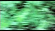 Бг. Превод! Jack and Jack - Wild Life Оfficial Music Video