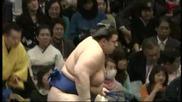 Аоияма с шеста победа този път срещу Миогирю / Аки Башо 27.9.2013