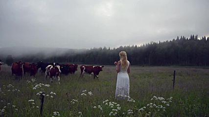 Един по-различен и красив начин да събереш стадо крави