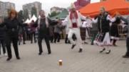 Кръшно хоро на Табиет фест в София. Бяла роза.