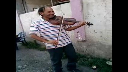 ciganin sviri na cigulka