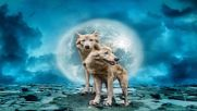 Celtic Music Wolf Night _ Best Celtic Music by Adrian von Ziegler