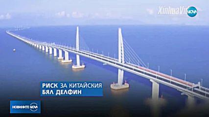 Най-дългият мост в света свързва Хонконг и Макао