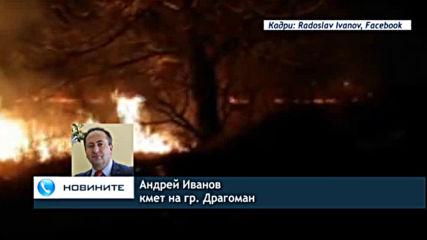 Потушиха напълно пожара край Драгоманското блато