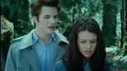 Вампирите не струват ( Vampires Suck )