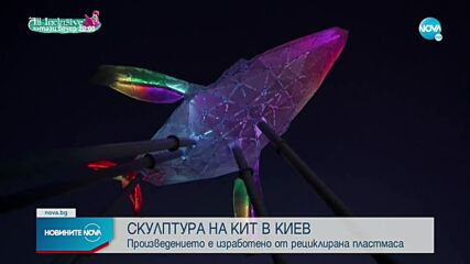 Направиха скулптура на кит от 1 тон пластмаса
