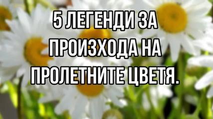 5 легенди за произхода на пролетните цветя