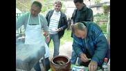 Панаир в село Петрич
