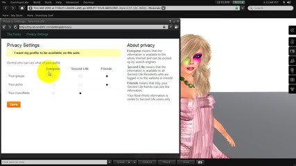 10 web profile tips - Second Life Viewer 2.5 Tutorial