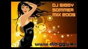 Best House Sommer Mix 2009