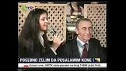 Nermina Golubovic - Pitaj sokole - Prevod