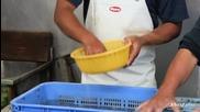 Така се сортират скариди на остров Куме