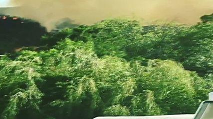 USA: Evacuation underway in Calabasas as brush fire speads
