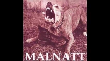Malnatt - Per l'onore d'italia