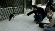 Morrissey - Glamorous Glue (Оfficial video)