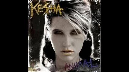 ( ) Ke$ha - Your Love Is My Drug