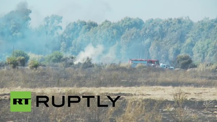 Italy: Forest fire grounds Rome airport to a halt, emergency services battle flames
