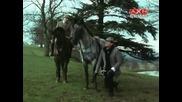 Завръщането на Шерлок Холмс - Случка в интерната - Сериал Бг Субтитри