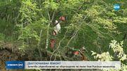 ДЪЛГООЧАКВАН РЕМОНТ: Започва укрепването на свлачището по пътя към Рилския манастир