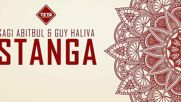 Sagi Abitbul Guy Haliva - Stanga Original Mix ( Чичовите конье )