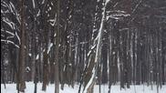 Снежна Кралица •• 2014 •• Allen & Lande •• Lady of Winter •• Official Lyric Video
