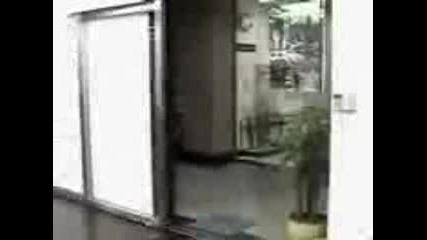 Странна Врата