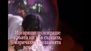Страстта На Тишината - Илко Карайчев - zefpet (+16)