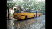 Някои от автобусите в Стара Загора