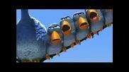 страхотна 3d анимация за птиците