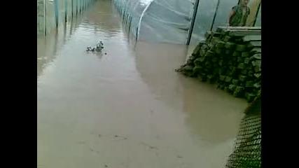 Последици от проливния дъжд в с. Салманово