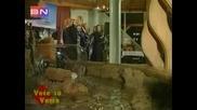 Grupa Djerdan  -  Cojle, Manojle (на живо)
