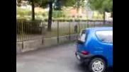 Fiat Seicento baxti Dartaka